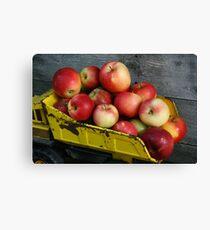 Lienzo Truckload of Apples