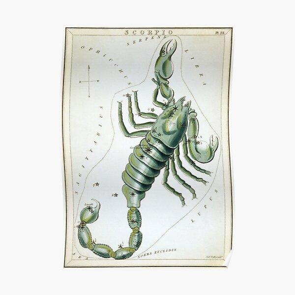 Vintage Scorpio Constellation Map (1825) Poster