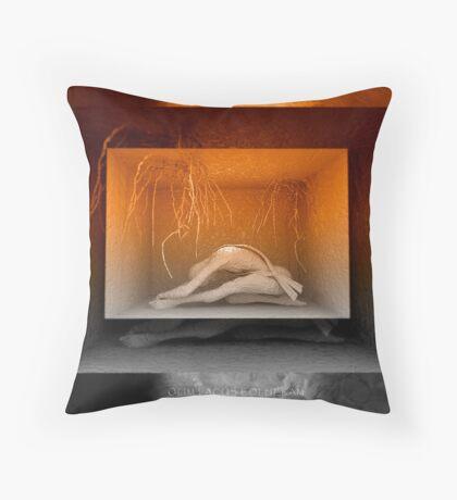 Olim Lacus Colueram  Throw Pillow
