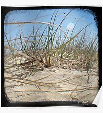 Grassy Dunes - TTV #2 Poster