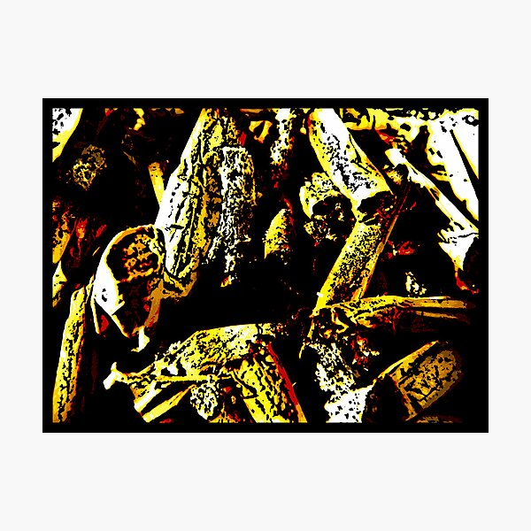 Ashes To Ashes Photographic Print