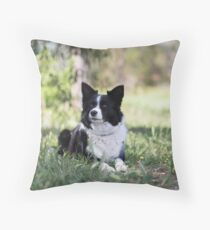 """Beautiful Border Collie.... Alley"""""""" Throw Pillow"""