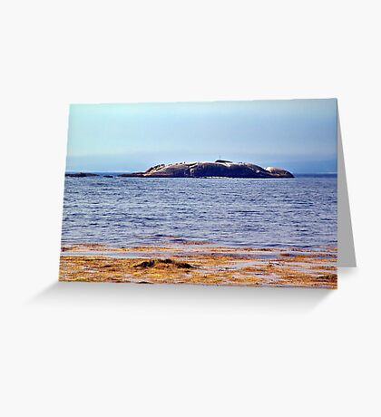 Indian Harbour, Nova Scotia Greeting Card