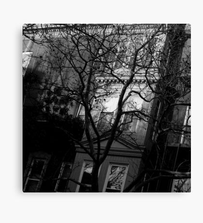 winter street. brooklyn, nyc Canvas Print