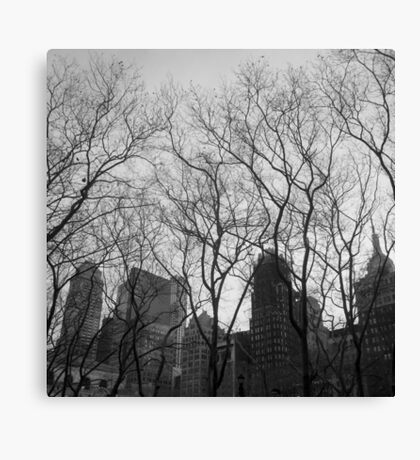park and city, midtown, nyc Canvas Print