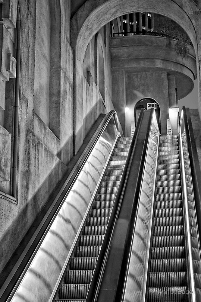 Up the Down Staircase by Ann J. Sagel