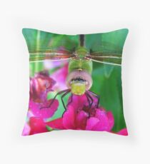 I Have My EYE on you 1 Throw Pillow