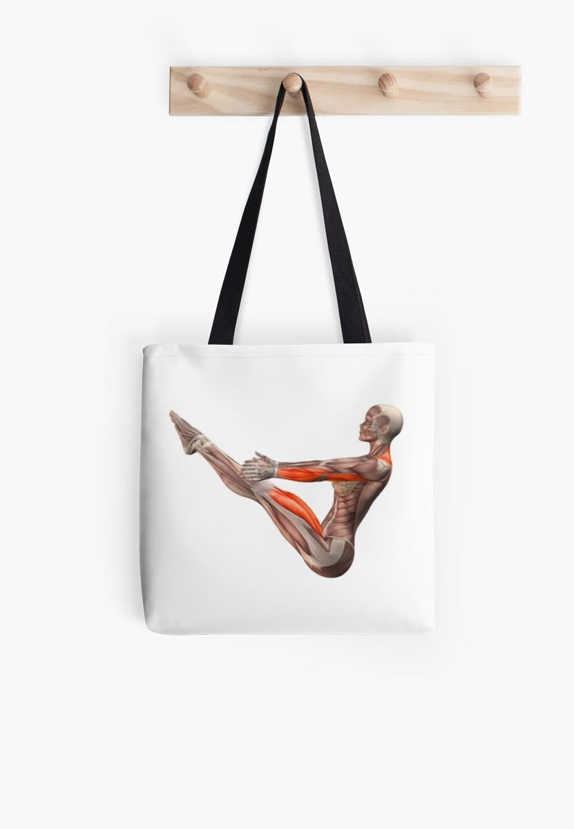 Dessins Musculo-squelettique des positions de Yoga