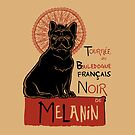 Le bouledogue français The Black Frenchie by Huebucket