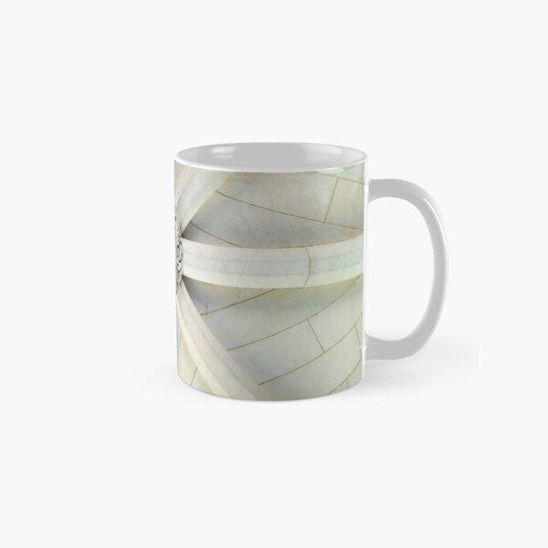 Rock Arch Owl - Bryn Mawr College Classic Mug
