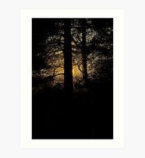 7 star ******* Lappland sunset - Sweden. Brown Sugar Story. Art Print