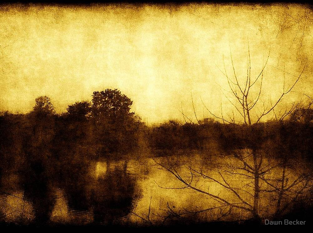 As Color Fades ©  by Dawn Becker