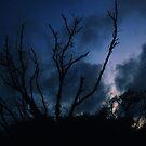 Scratch The Sky by mojo1160