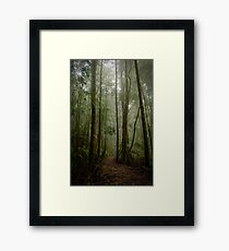 On the way to Philosophers falls Framed Print