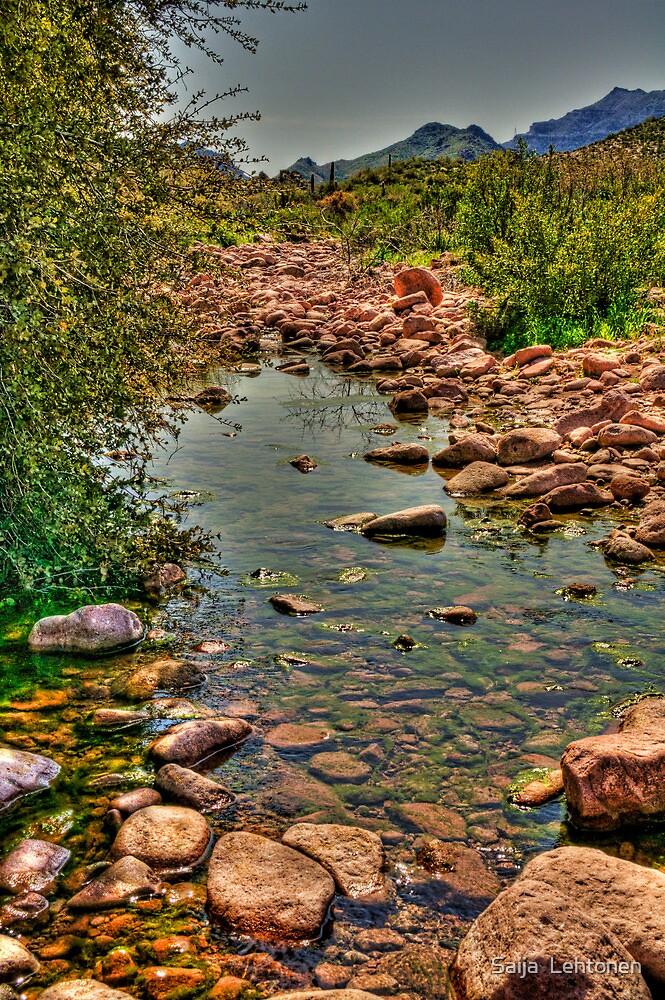 Sitting by the Creek  by Saija  Lehtonen