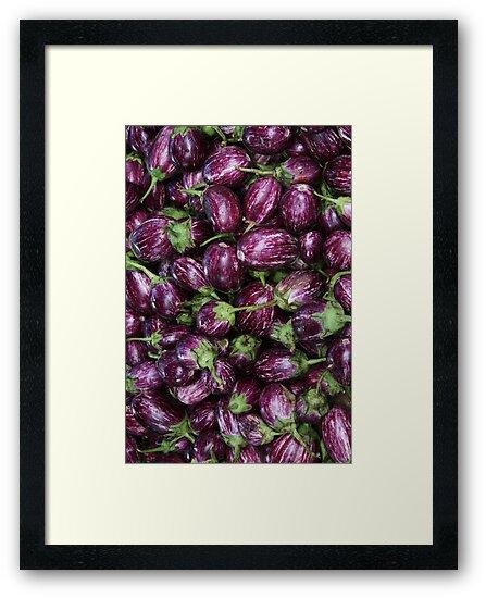Aubergine, Eggplant, Brinjal, Terong by Jane McDougall