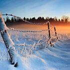 Warm cold winter sunset, Eesti looduskalender maastik by Romeo Koitmäe