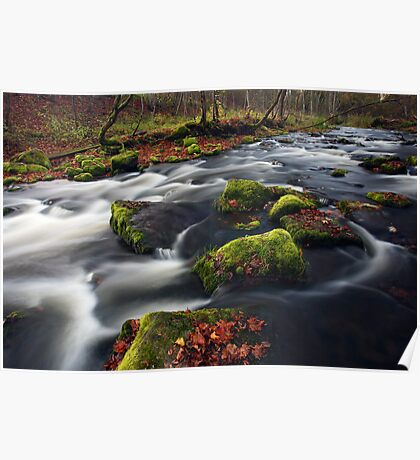 Small river cascade Poster