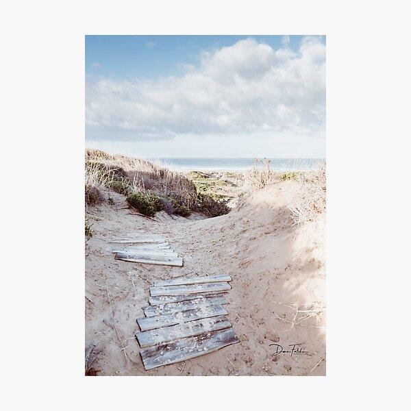 Winter walk to the beach Photographic Print