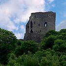 Dolbadarn Castle - Llanberis by Trevor Kersley