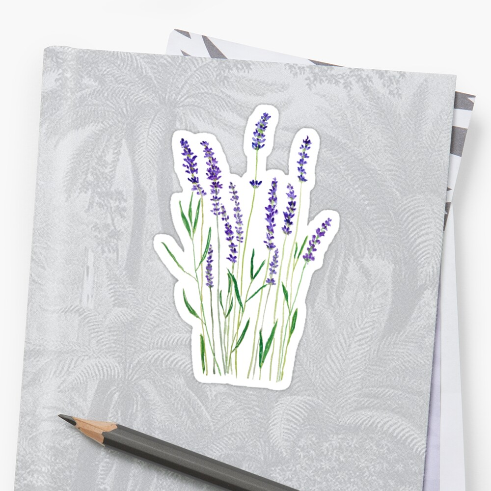 purple lavender  Sticker