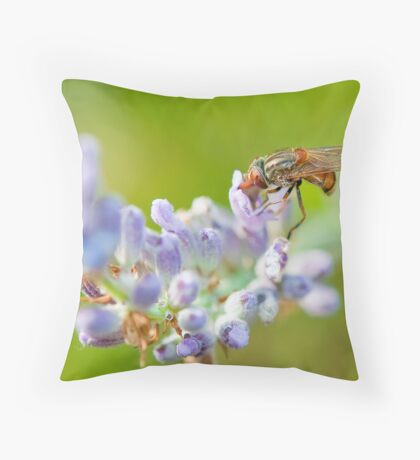 Hover fly on lavender - efef59a38f544cf79445844db6ea90e9 Throw Pillow