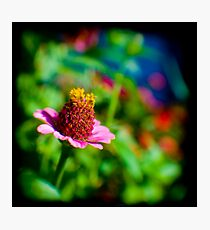 TTV Photographic Print