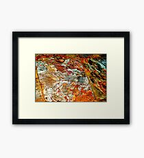 The Landing Framed Print