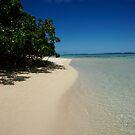 Rarotongan Beach by Adam Jones