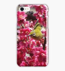 Small Yellow Bird In A Tree iPhone Case/Skin
