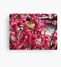 Small Yellow Bird In A Tree Canvas Print