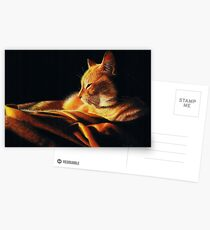 By the Light of the Fire Postcards