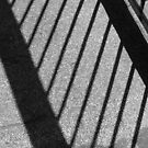Light and dark railing by Vanella Mead