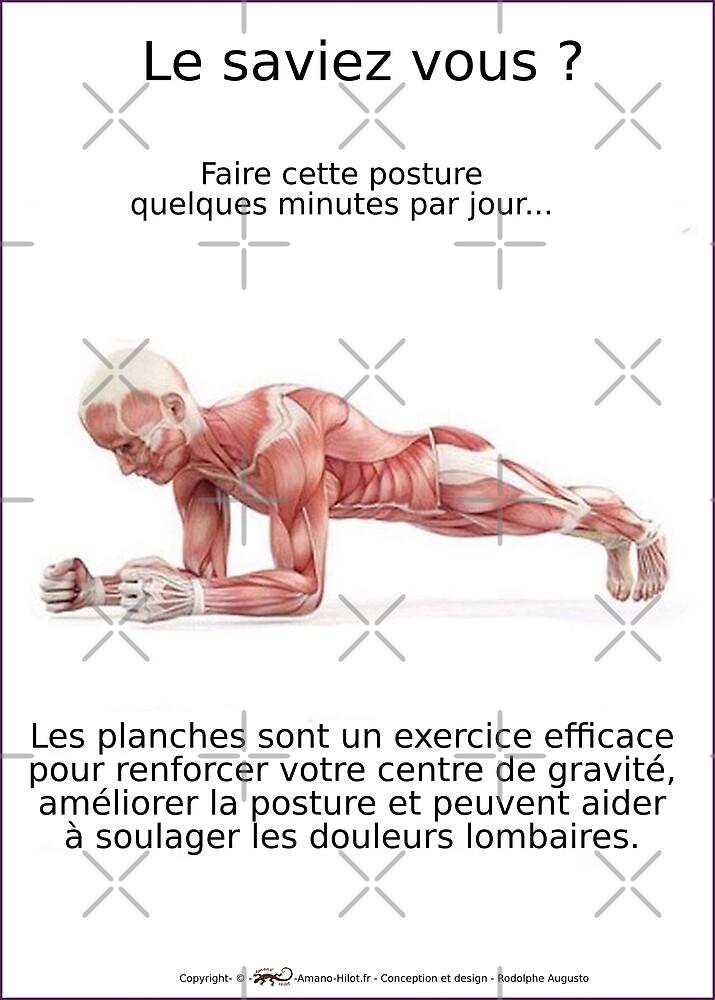 « Planches Musculo-squelettique des positions de Yoga - N°2 » par rodolphe Augusto