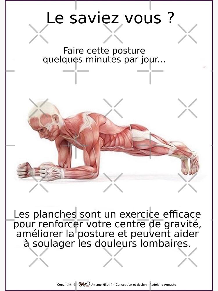 «Planches Musculo-squelettique des positions de Yoga - N°2» par rodolphe-a