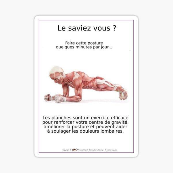 Planches Musculo-squelettique des positions de Yoga - N°2 Sticker