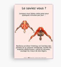 Planches Musculo-squelettique des positions de Yoga - N°3 Impression sur toile
