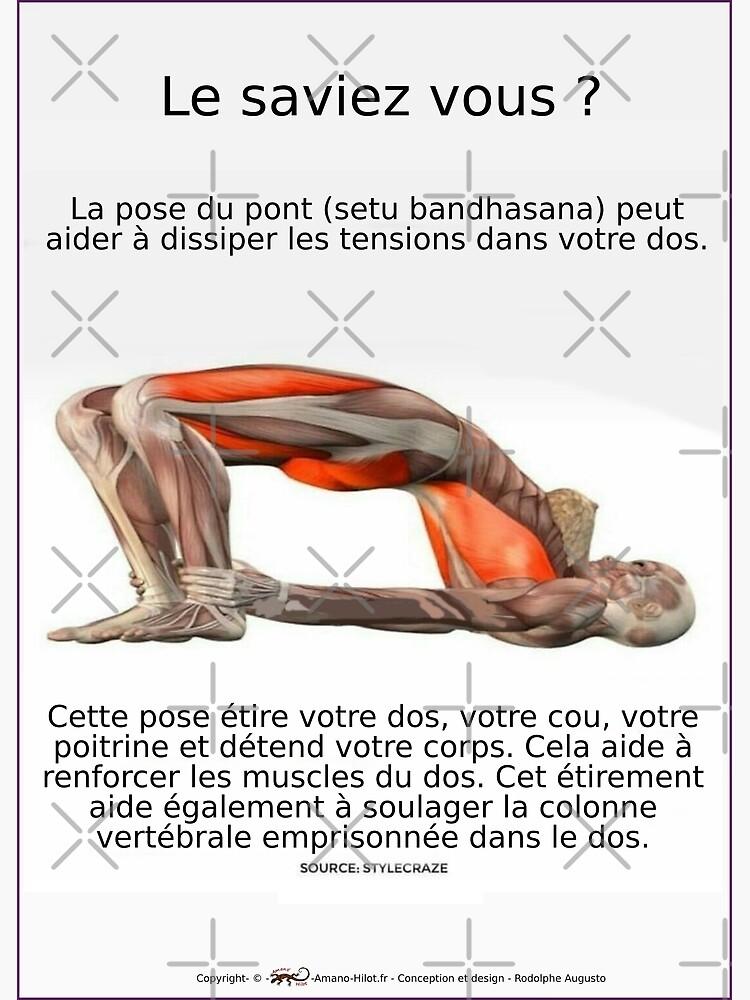 «Planches Musculo-squelettique des positions de Yoga - N°4» par rodolphe-a