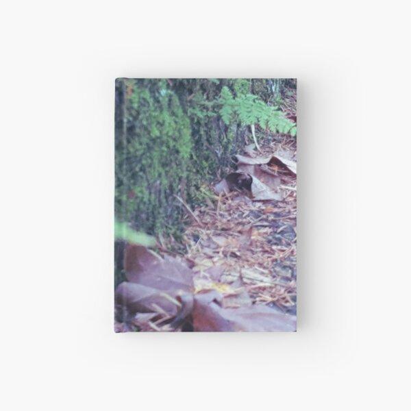 "WALKITOFF ""Natural Landscapes - Mount Lofty 002"" Hardcover Journal"