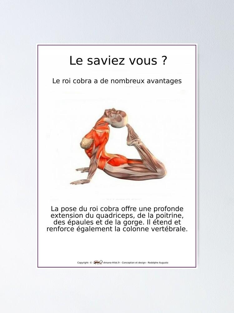 Poster ''Planches Musculo-squelettique des positions de Yoga - N°8': autre vue