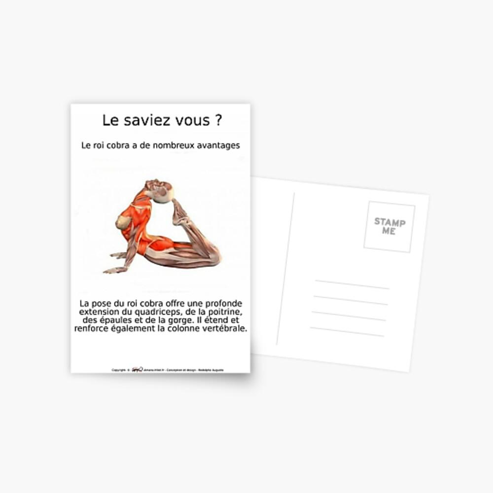 Carte postale «Planches Musculo-squelettique des positions de Yoga - N°8»