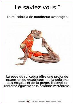 Planches Musculo-squelettique des positions de Yoga - N°8