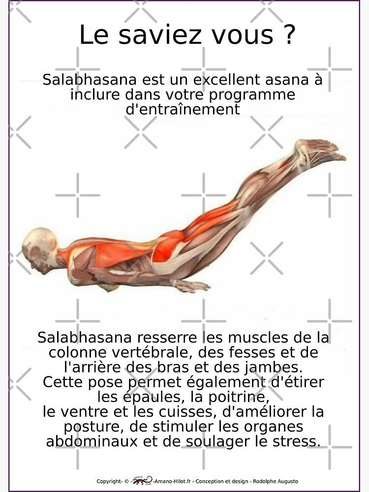 «Planches Musculo-squelettique des positions de Yoga - N°9» par rodolphe-a
