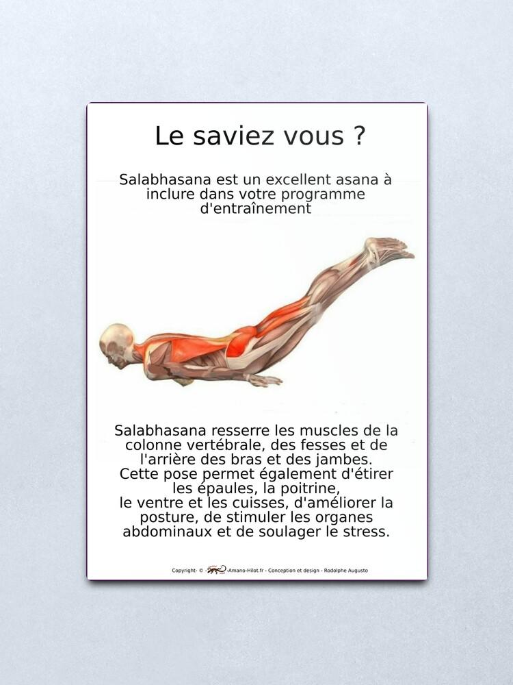 Impression métallique ''Planches Musculo-squelettique des positions de Yoga - N°9': autre vue