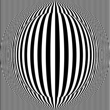 Zebra Rump by keithcr