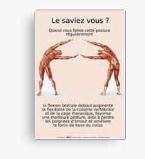 Planches Musculo-squelettique des positions de Yoga - N°13 Impression sur toile