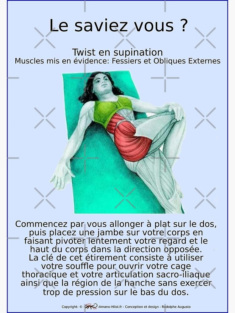 «Planches Musculo-squelettique des positions de Yoga - N°17» par rodolphe-a