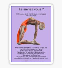 Planches Musculo-squelettique des positions de Yoga - N°1 Sticker