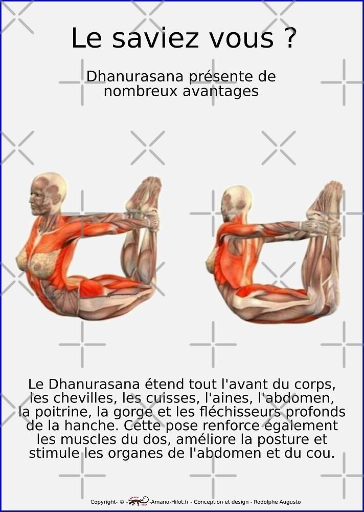 « Planches Musculo-squelettique des positions de Yoga - N°20 » par rodolphe Augusto