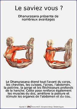 Planches Musculo-squelettique des positions de Yoga - N°20